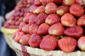 Da Lat Sebagai Pusat Pertanian Seluruh Vietnam