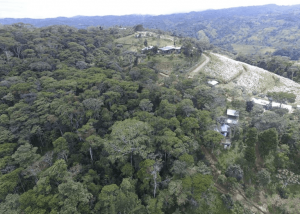 Pertanian Organik yang Menginspirasi di Kosta Rika